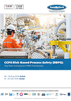 thumbnail of HS 117CCPS Risk-Based Process Safety (RBPS):
