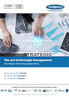 thumbnail of MG 207The Art of Strategic Management