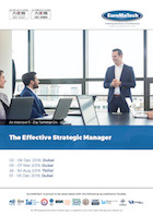 thumbnail of MG103aThe Effective Strategic Manager