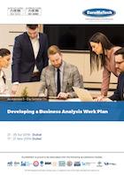 thumbnail of MG325Developing a Business Analysis Work Plan
