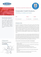 Corporate Credit Analysis: Forecasting, Formulation and Analysis Thumbnail