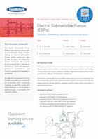 Electric Submersible Pumps (ESPs) Thumbnail